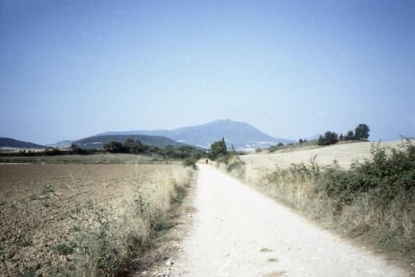 el camino_013