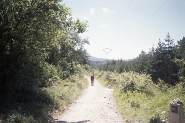 el camino_015