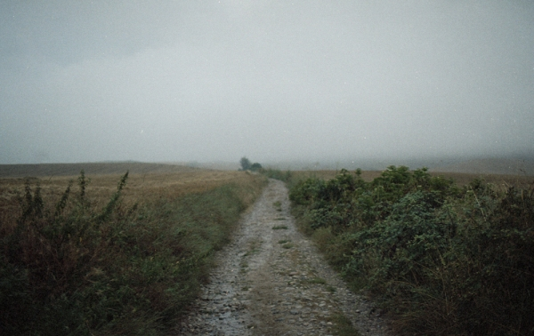 camino by Sanne Poppeliers21
