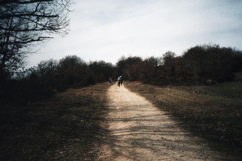 el camino_031