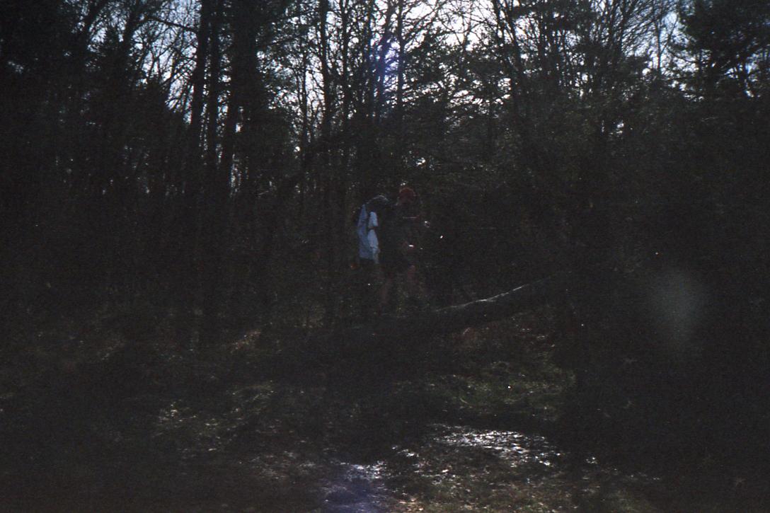 el camino_032