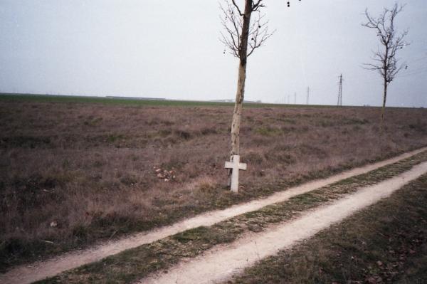 el camino_55