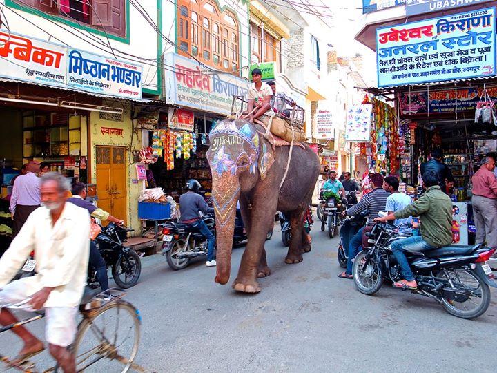 India by Naan Eldering_04